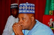 Gov. Shettima Begs Buhari To Act Fast As Boko Haram Attack Is Escalating