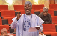 Dollar may equal N500 in the next 60 days — Melaye