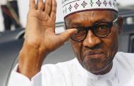 Buhari goes to Daura for Sallah today