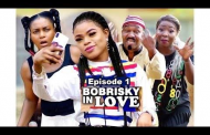 Homosexuality: FG Board Sets Up Panels, May Ban Bobrisky Movie