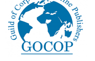 GOCOP expresses worry over suspension of AIT, Ray Power licences