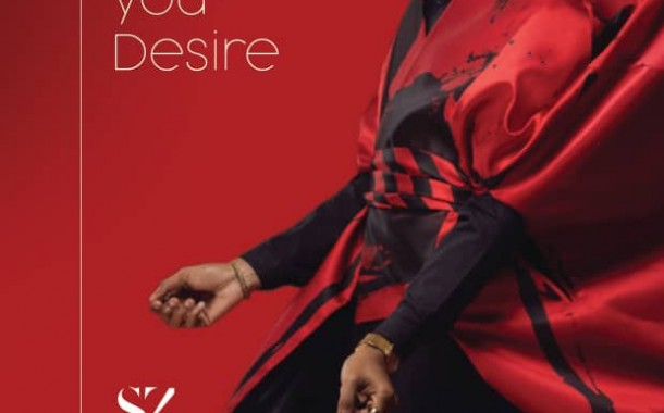 "Zenith Bank unveils ""Style by Zenith 2.0"""