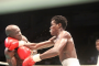 GOtv Boxing Night Mini: Boxers Talk Tough
