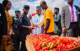 APC will take 100m Nigerians out of poverty in 10 years -Osinbajo