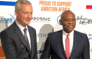 Elumelu to investors in Paris: Africans do not need aid, our young people need investments